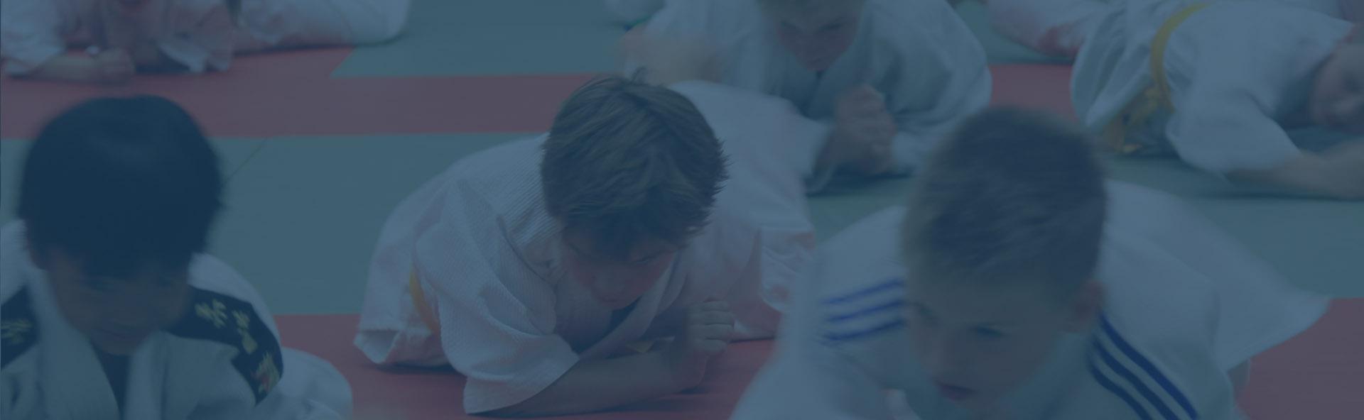 Welkom op de website van Judo Vereniging Ootmarsum