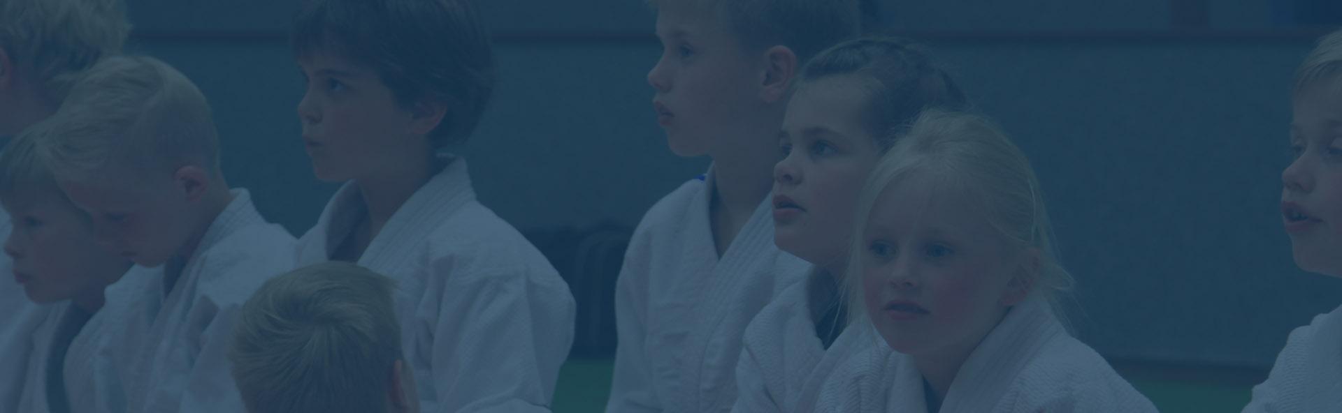 Welkom op de website van Judo Vereniging Ootmarsum (JVO)